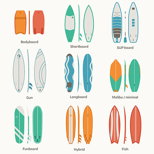 surfboards and bodyboard size comparisons